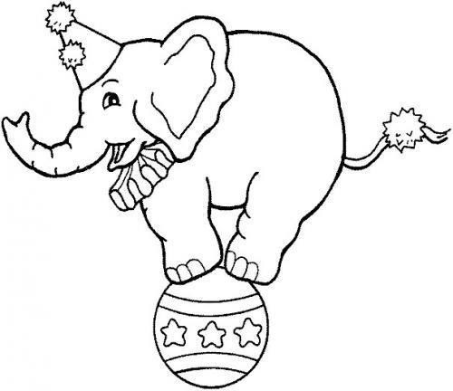 elefante disegno