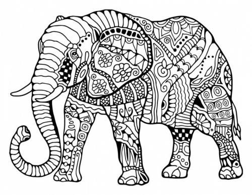 elefante stilizzato per adulti da colorare