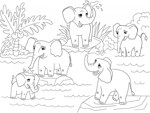 elefanti africani e indiani