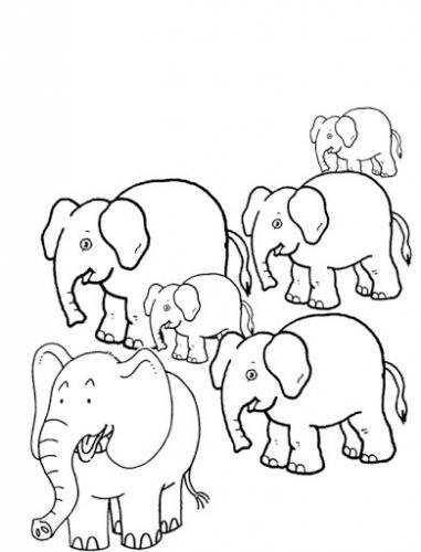 elefanti creativi