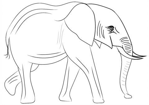 elefanti da stampare