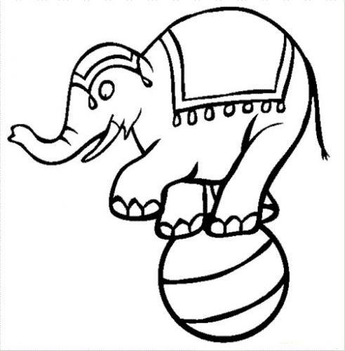elefanti disegni per bambini