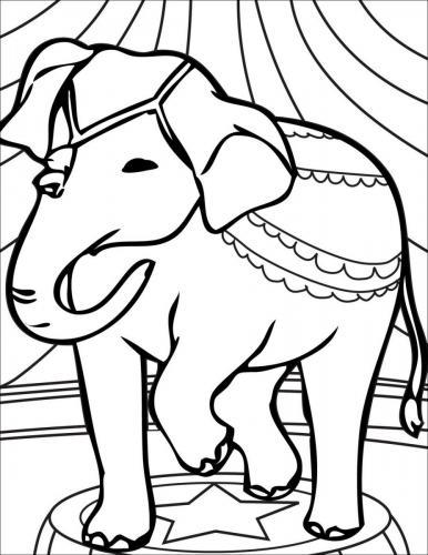 elefanti per bambini