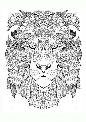 faccia leone stilizzata