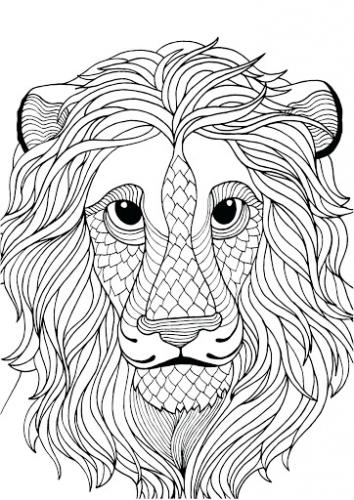 faccia leone