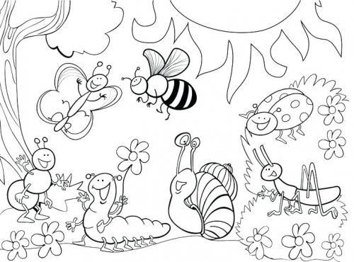 farfalle e coccinelle disegni