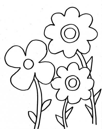 fiore da stampare