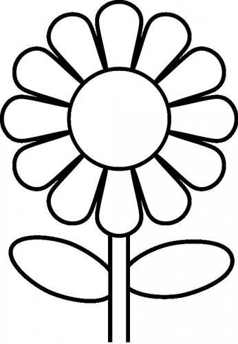 fiore disegno da colorare