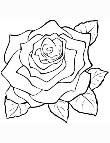 fiori da colorare e stampare