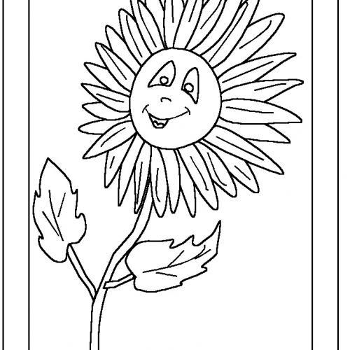 fiori da disegnare