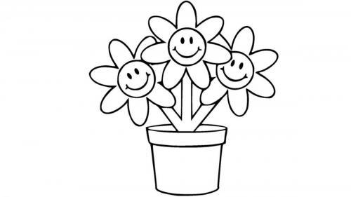 fiori disegnati