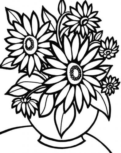 fiori disegni a matita