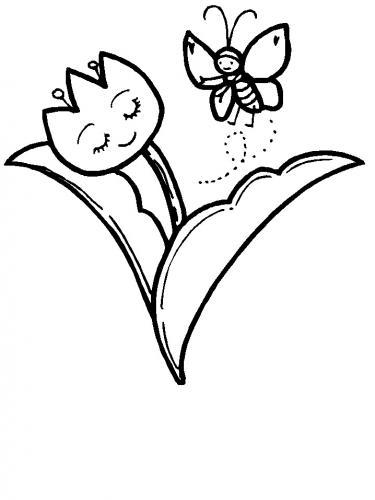 fiori disegno