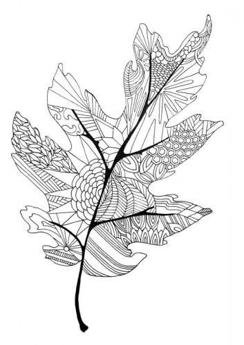 foglie autunnali da colorare e ritagliare