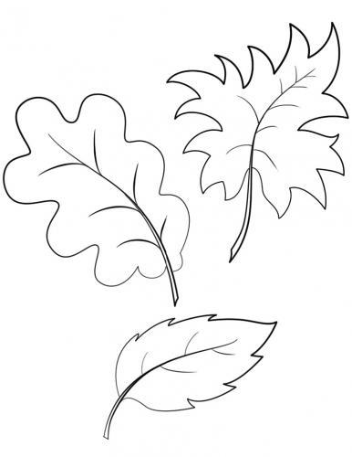 foglie autunnali da colorare e stampare