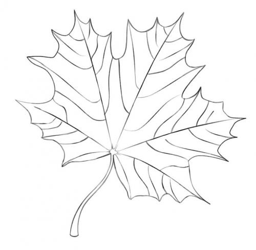foglie di Autunno da colorare