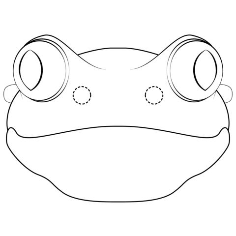 foto di una rana
