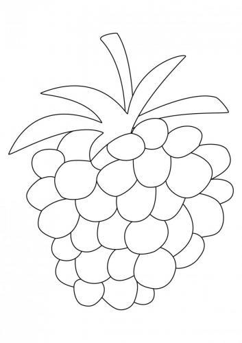 frutta da colorare