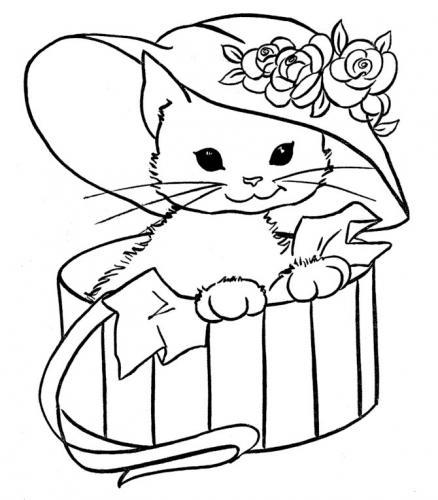 gatti da disegnare