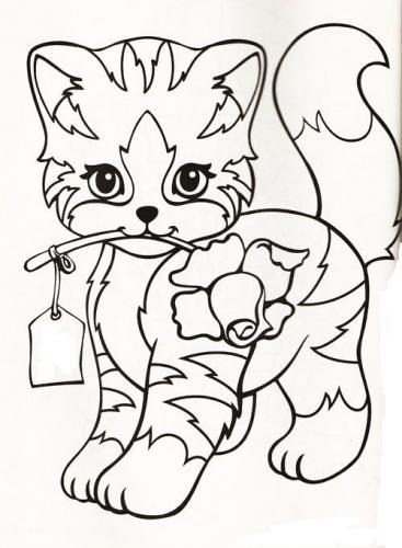 gattina con una rosa