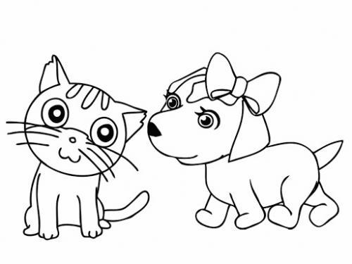 gattino e cagnolina