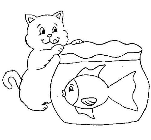 gatto con il pesce