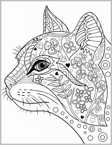 gatto disegno per adulti