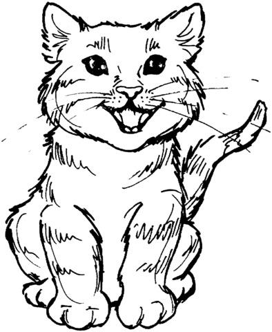 gatto facile da disegnare