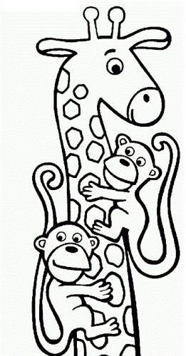 giraffa da colorare pdf gratis