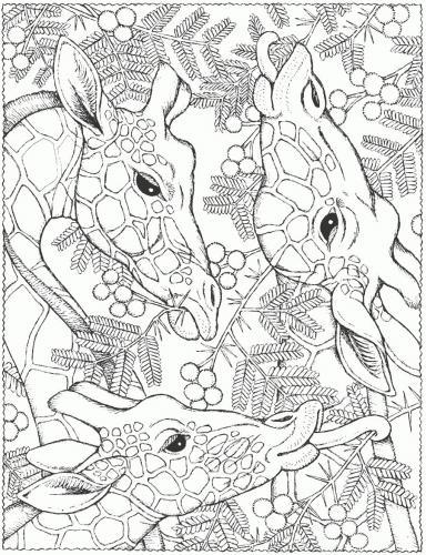 giraffa disegno da colorare pdf