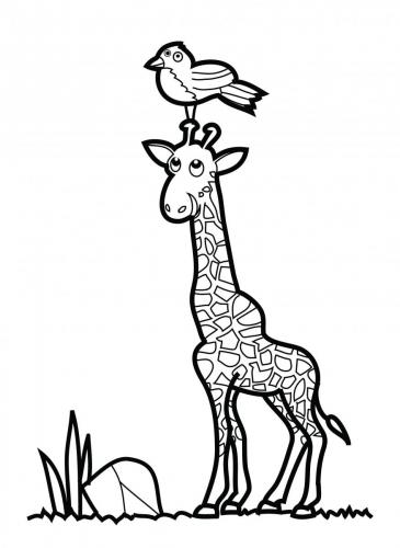 giraffa disegno per bambini pdf gratis
