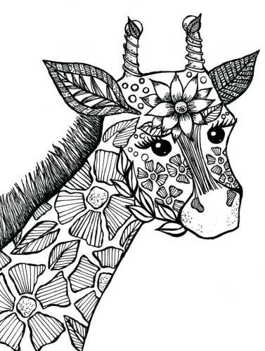 giraffa immagini da colorare pdf