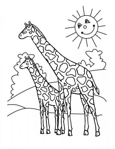giraffe disegni pdf