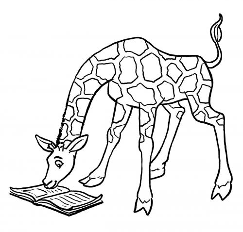 giraffe immagini pdf gratis