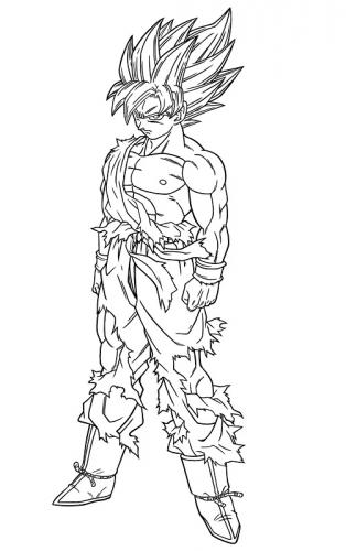 Goku 3 livello