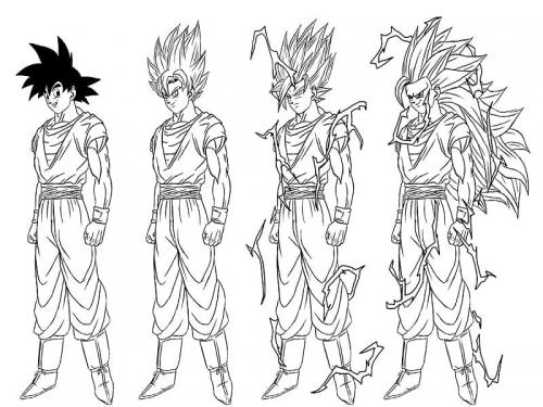 Goku terzo livello