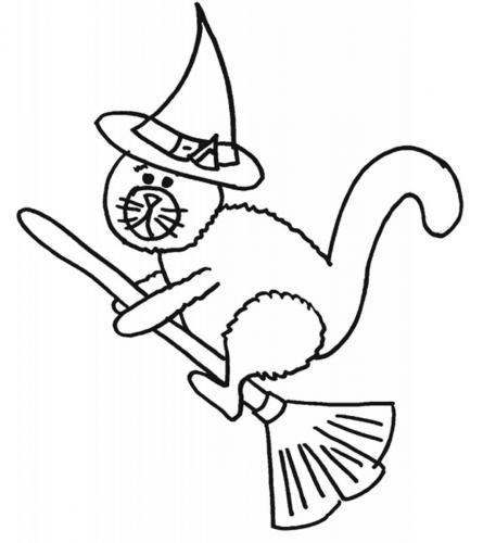 gatto sulla scopa