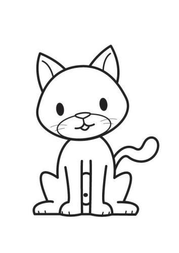 immagine del gatto