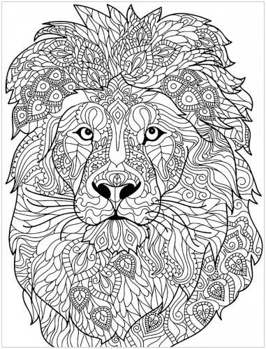 immagine leone stilizzato