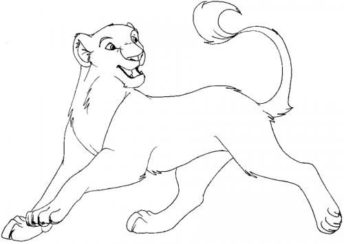 immagine leonessa