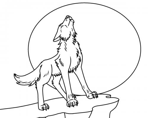 immagine lupo da colorare