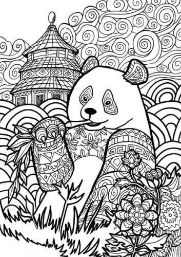 immagine panda