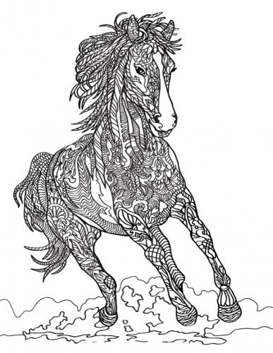immagine stilizzata cavallo da colorare