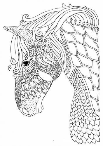 immagine stilizzata cavallo
