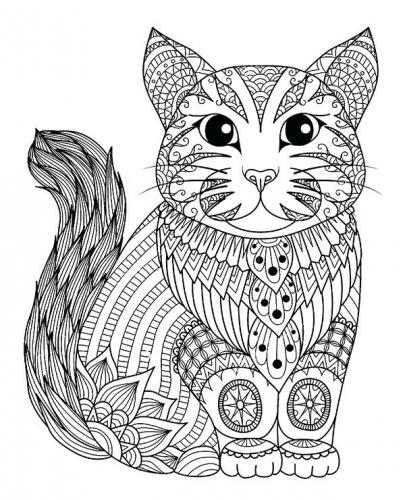 immagine stilizzata gatto