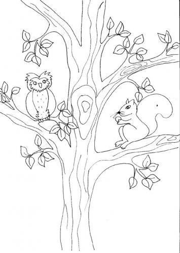albero nocciole
