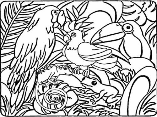 immagini animali disegnati