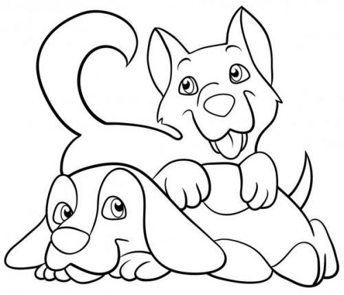 immagini cagnolini