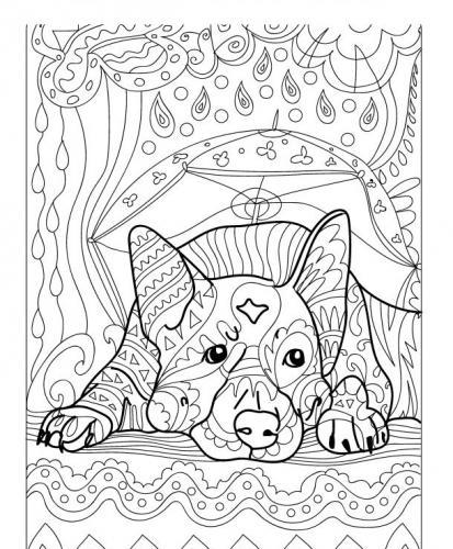 immagini cani da disegnare