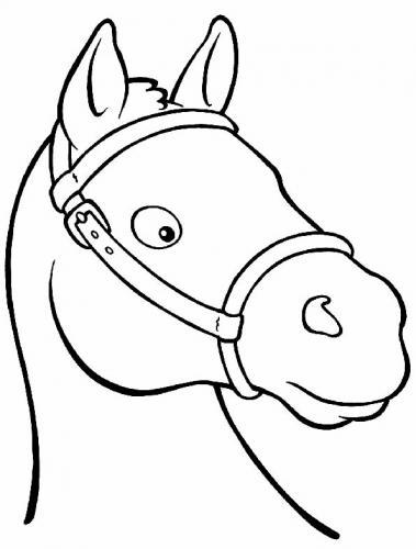 immagini cavalli per bambini